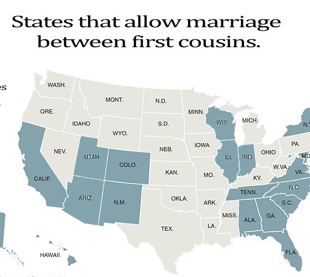 Cousin Marriage Vs. Gay Marriage Infographic