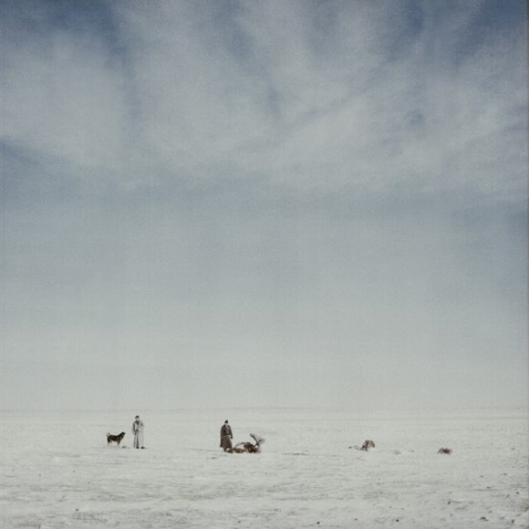 these-20-award-winning-photos-nn