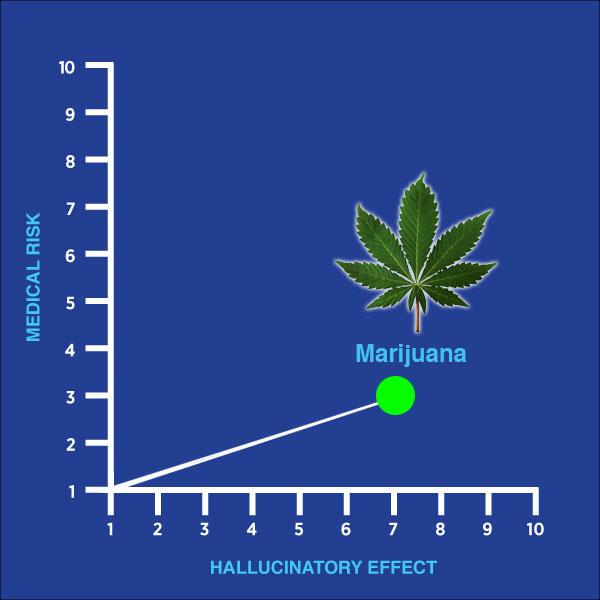 weed, marijuana, pot, smoking, drug of the week, chart, medical risk, hallucinatory effect