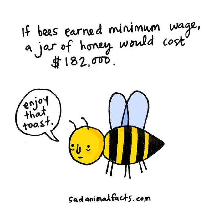 bees, honey, sad, animal facts, cartoon, gay blog, queer, lgbt, funny