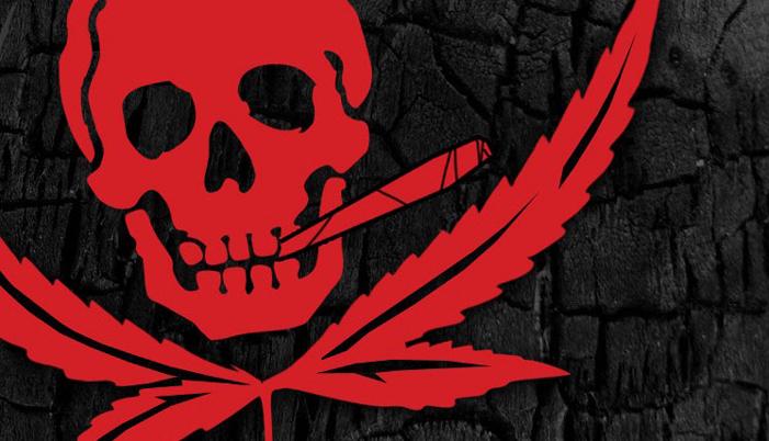 treasure island media, weed, marijuana