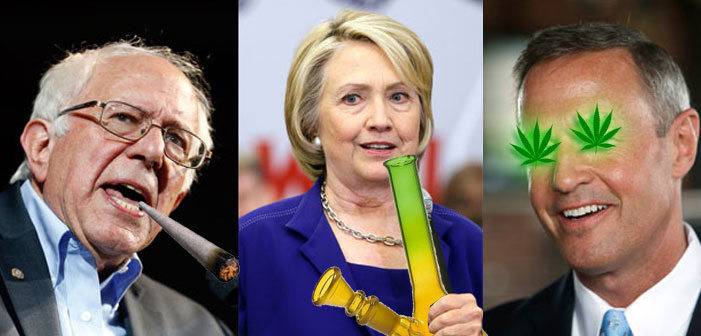Here's Bernie, Hillary And O'Malley's Stances on Weed