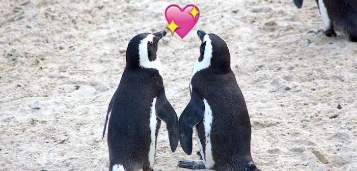 Marriage Equality Comes To Antarctica!