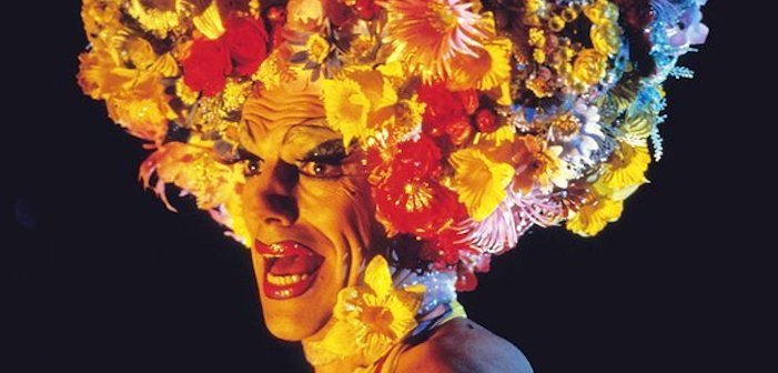 6 Things I Love & Hate About 'Priscilla, Queen of the Desert'