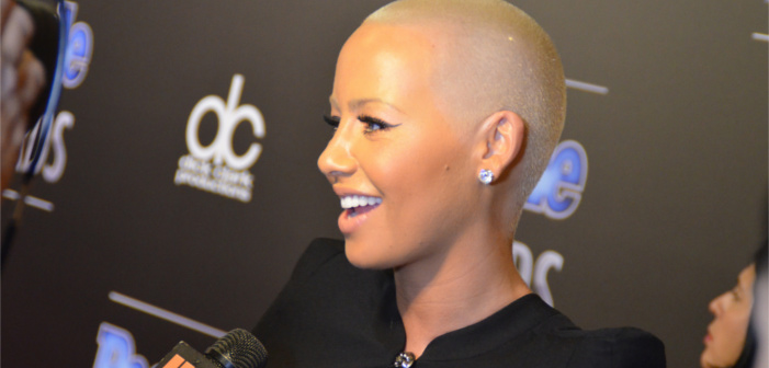 Amber Rose 'Wouldn't Be Comfortable' Dating a Bisexual Man
