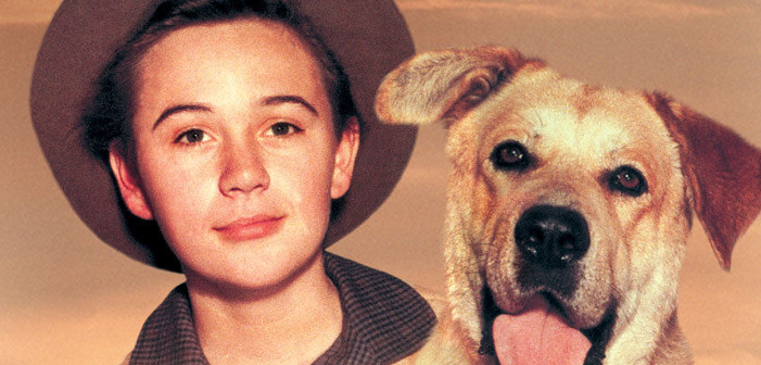 This Disney Child Star's Career Was Put Down Like Old Yeller — All Because He Was Gay