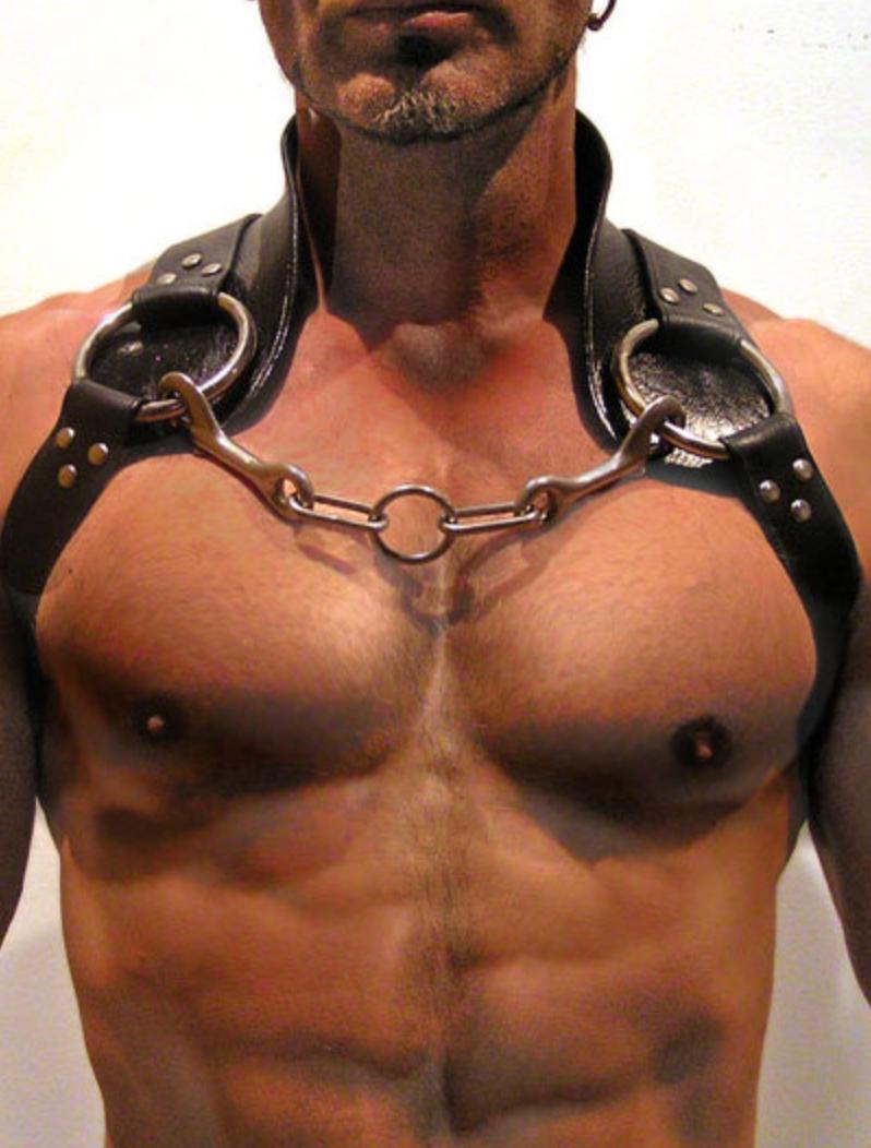 leather harness imanstudios
