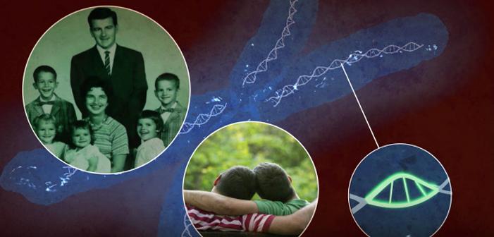 Забудьте про 'гей ген' — у науки есть новое объяснение гомосексуализма