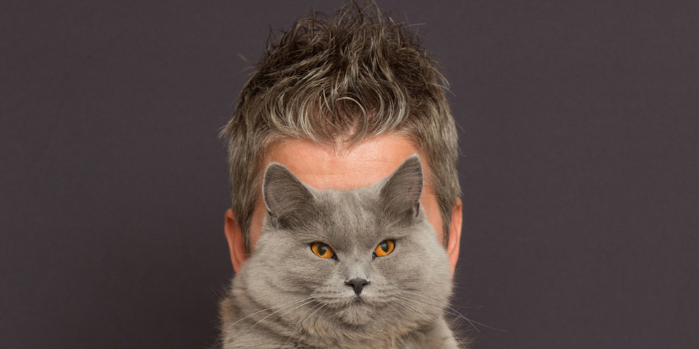 7 Traits That Prove Gay Men Are Exactly Like Cats