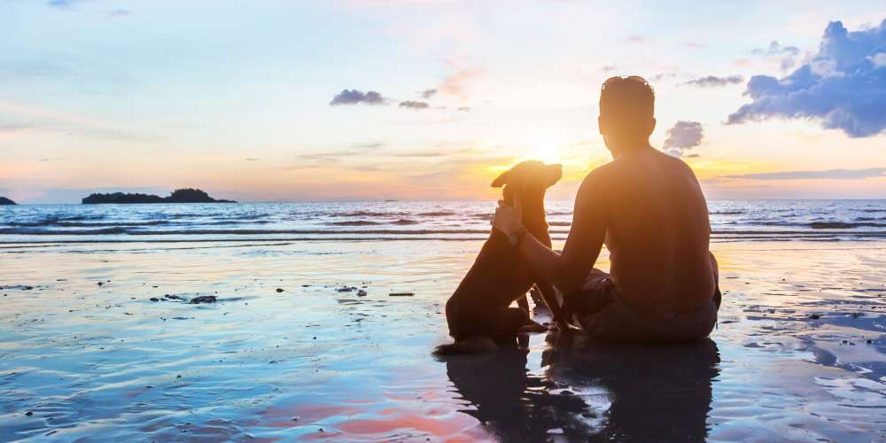 Man's Best Friend: 7 Reasons Why Dogs Are Better Than Boyfriends