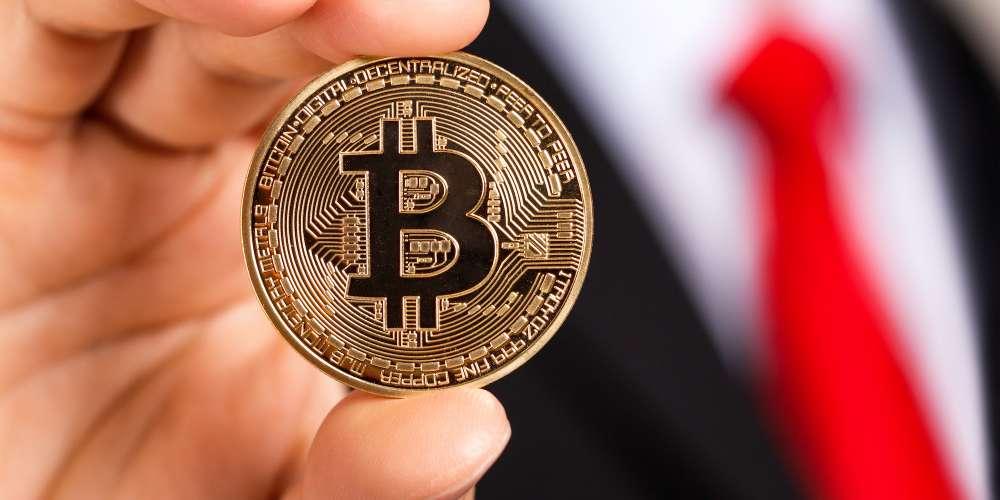 このHornet解説がビットコインについて知る必要のある全てを教えます
