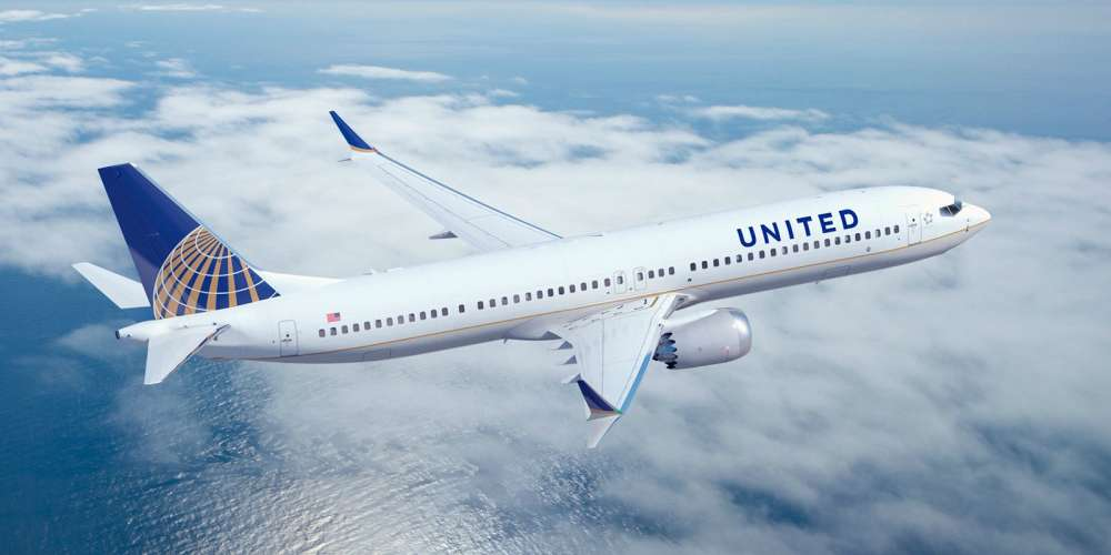 A Dog Died After a United Flight Attendant Forced It to Fly in an Overhead Bin