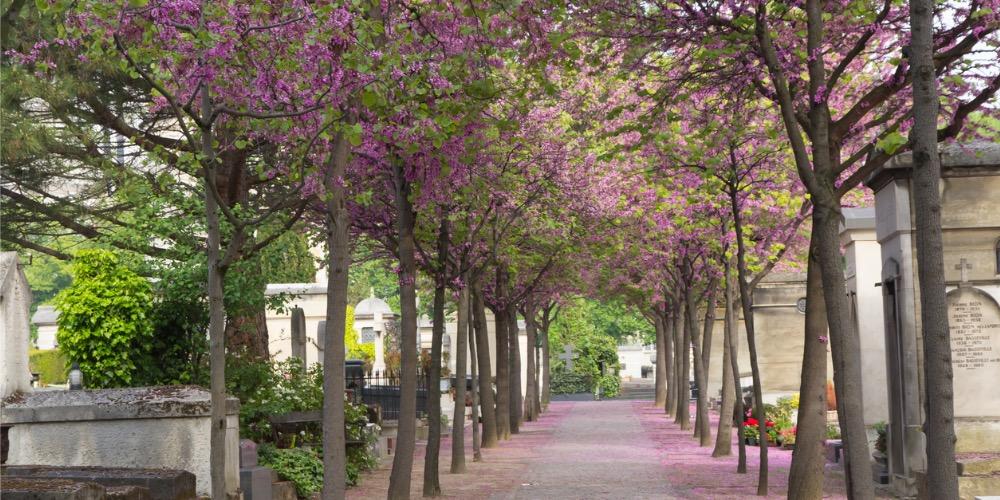 Une balade LGBT dans les cimetières parisiens (3/3): Le cimetière du Montparnasse