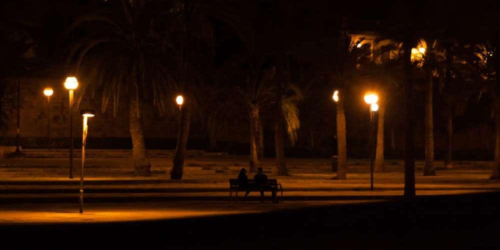 新公園 田野調查之三  凌晨的新公園