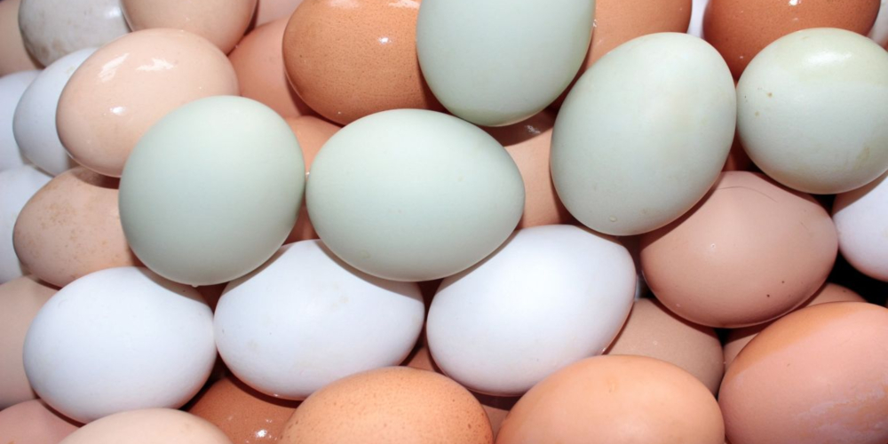 Homem coloca 15 ovos cozidos no ânus e é hospitalizado