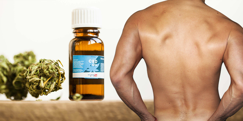 We Asked This Doctor About the Benefits of Using CBD Oil for Anal Sex