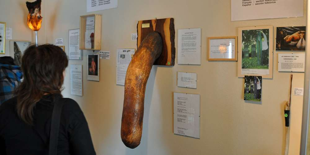 The Icelandic Phallological Museum Is a Unique Monument to the Glory of the Penis