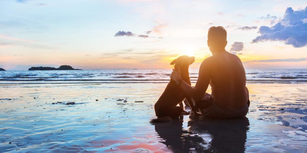 เพื่อนที่ดีที่สุด: 7 เหตุผลที่มีหมาดีกว่าแฟน