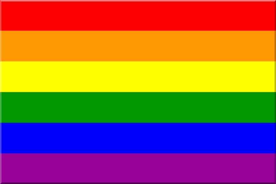 lgbtq flags 1979 pride flag