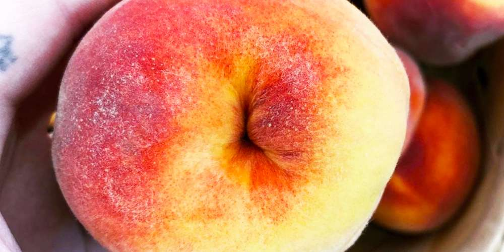 'Secret Buttholes' Is the Latest Eye-Opening Insta Account You Should Be Following