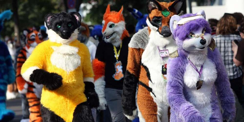 The Wonderful World of Furries: An Exploration